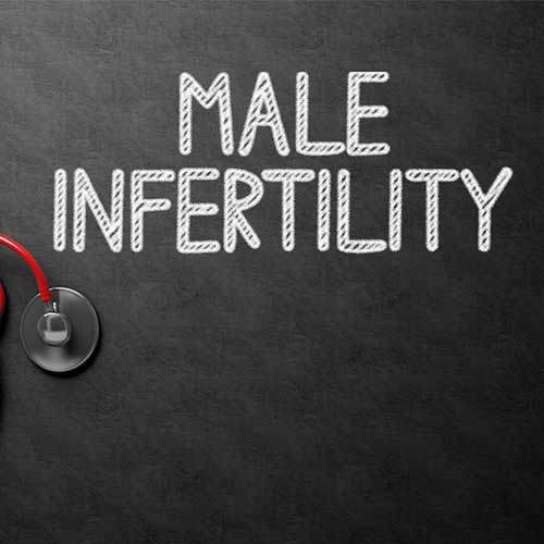 Male Infertility - Doctor - Specialist Chennai