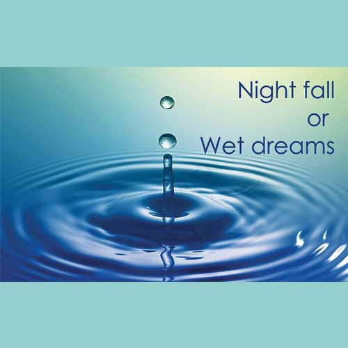 Night Fall or Wet Dreams in Men