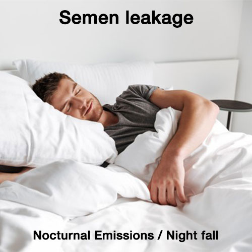 semen-leakage-nocturnal-emissions-night-fall